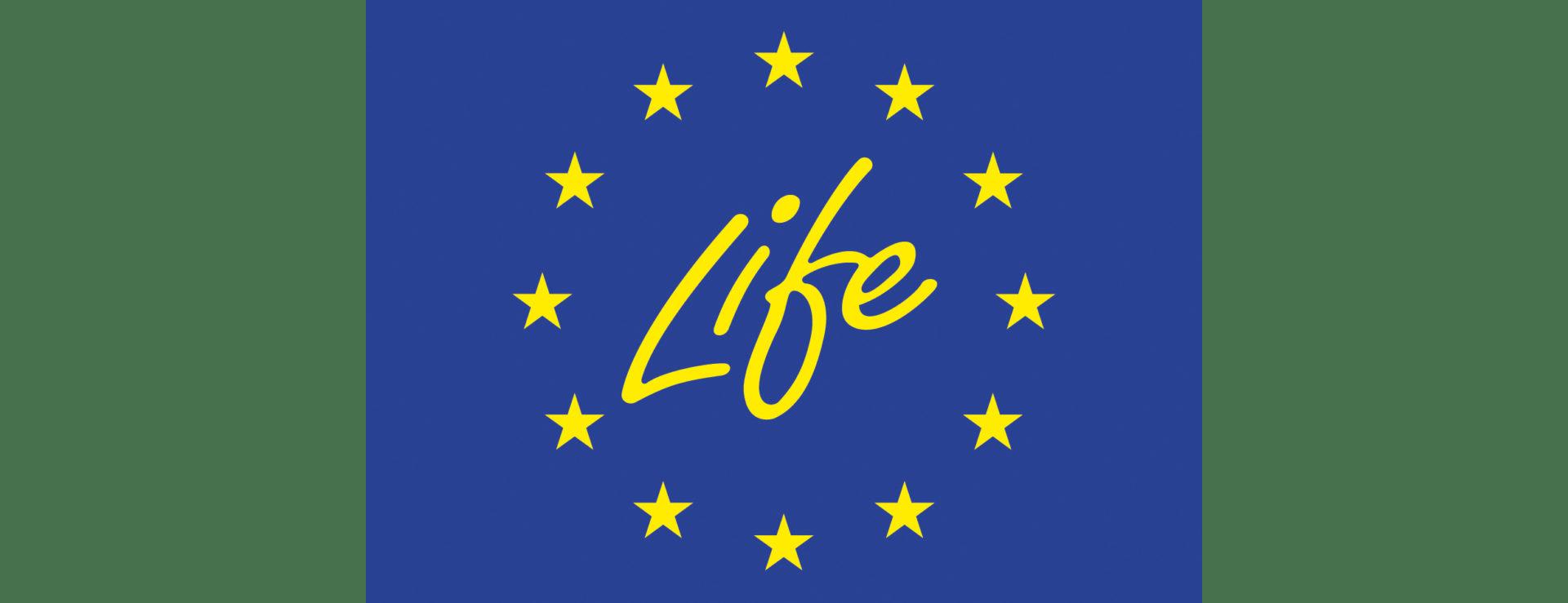 life-save life